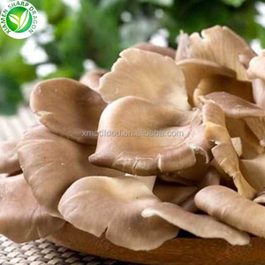 wholesale frozen kinds of fresh oyster mushrooms in low price