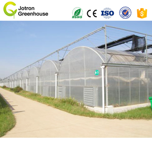 Multi Span Green House Promotion Plastic film Material Customized Greenhouse