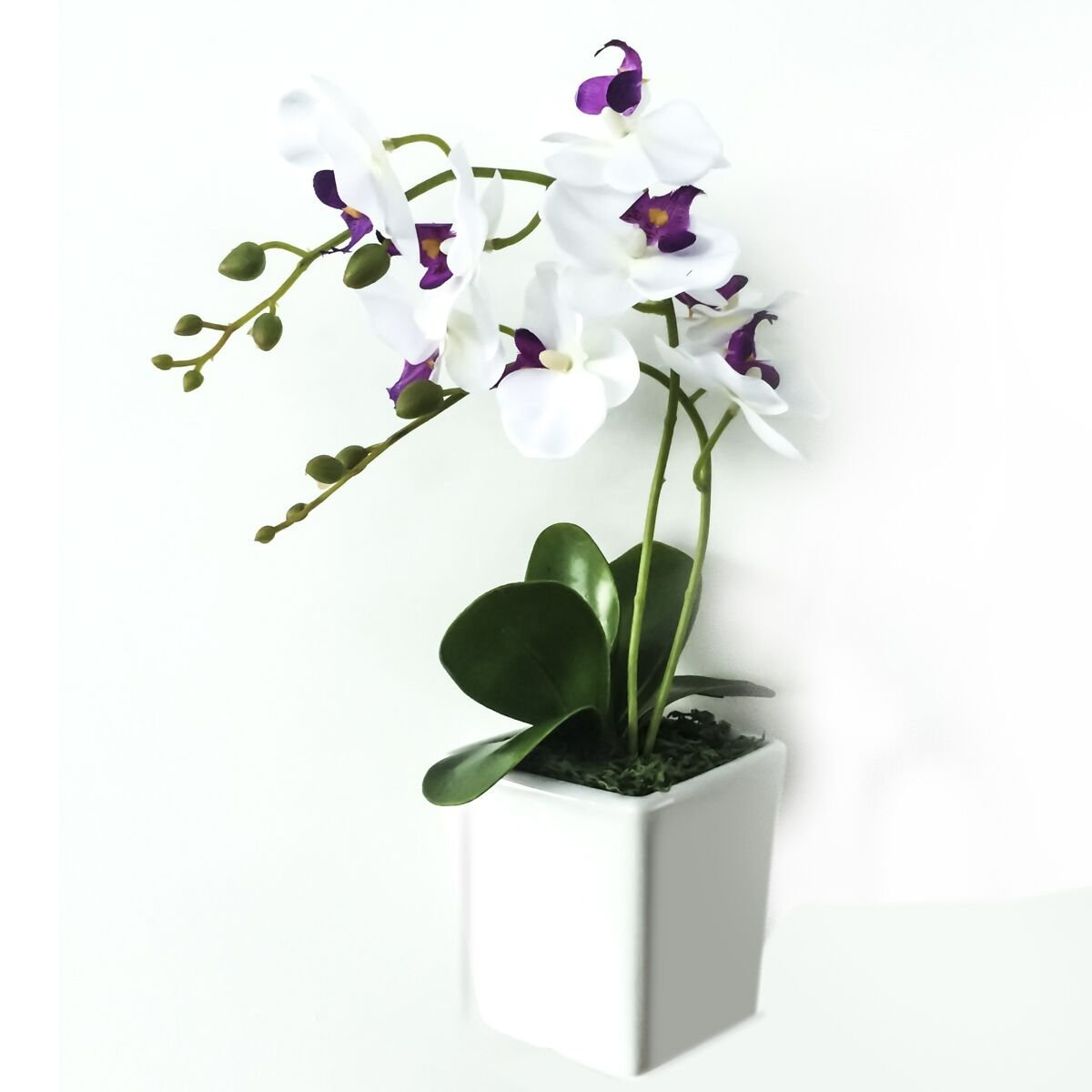 Nearly Natural Décor Artificial Silk Flower Decorative Silk Flower Arrangement with Creative Conch Ceramic Vase, Butterfly Orchid