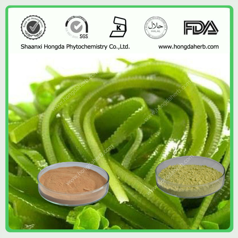 Herbal Kelp Extract, Laminaria 30%,95%
