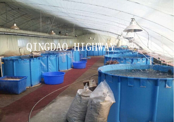 7000l,5000l,3000l Round Or Square Pvc Fish Pond/ Fish Pool For Fish Farm - Buy Fish Pool,Fish ...