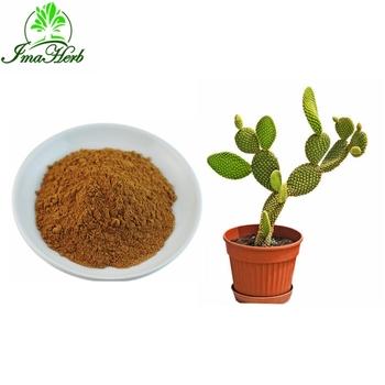 Factory Supply Nature Cactus Hoodia Gordonii Extract Price Buy
