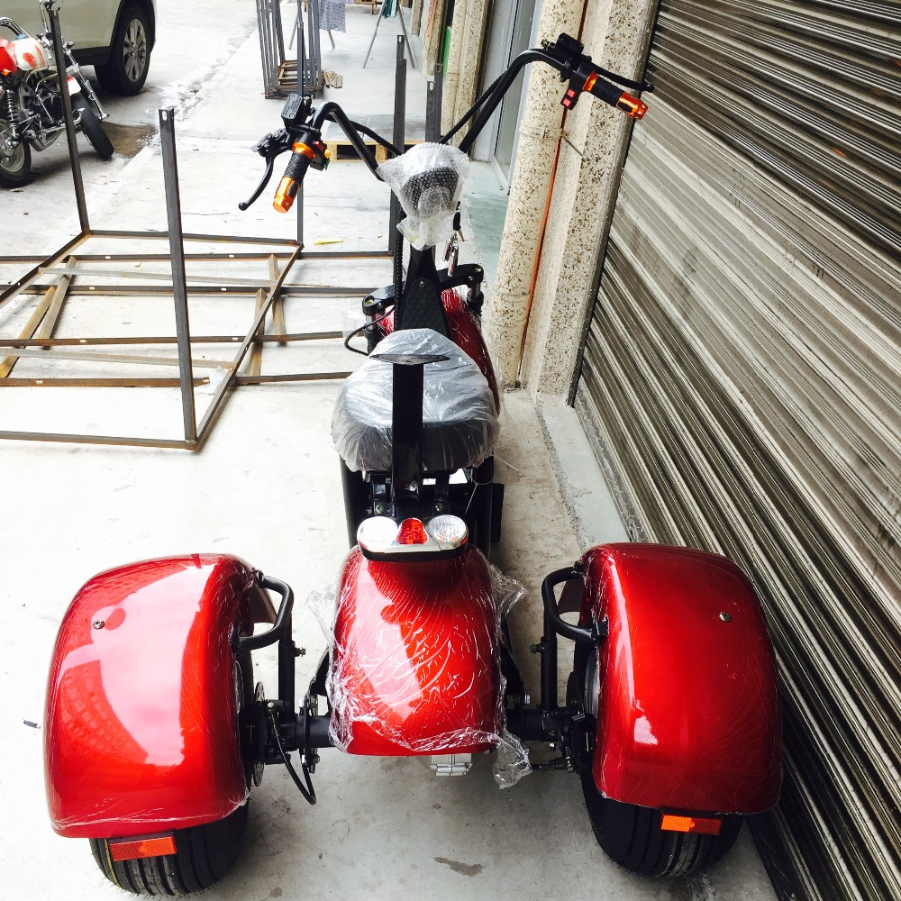 1000w electric scooter 3 wheel trike/petrol motorcycle Citycoco for adult