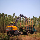 Forest small log loader wood grab machine