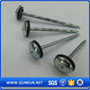 Galvanized roofing nails price/lead roofing nails