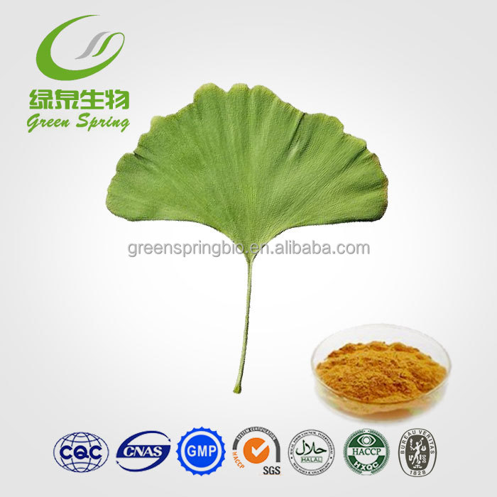USP grade ginkgo biloba extract 24V6% water soluble5%