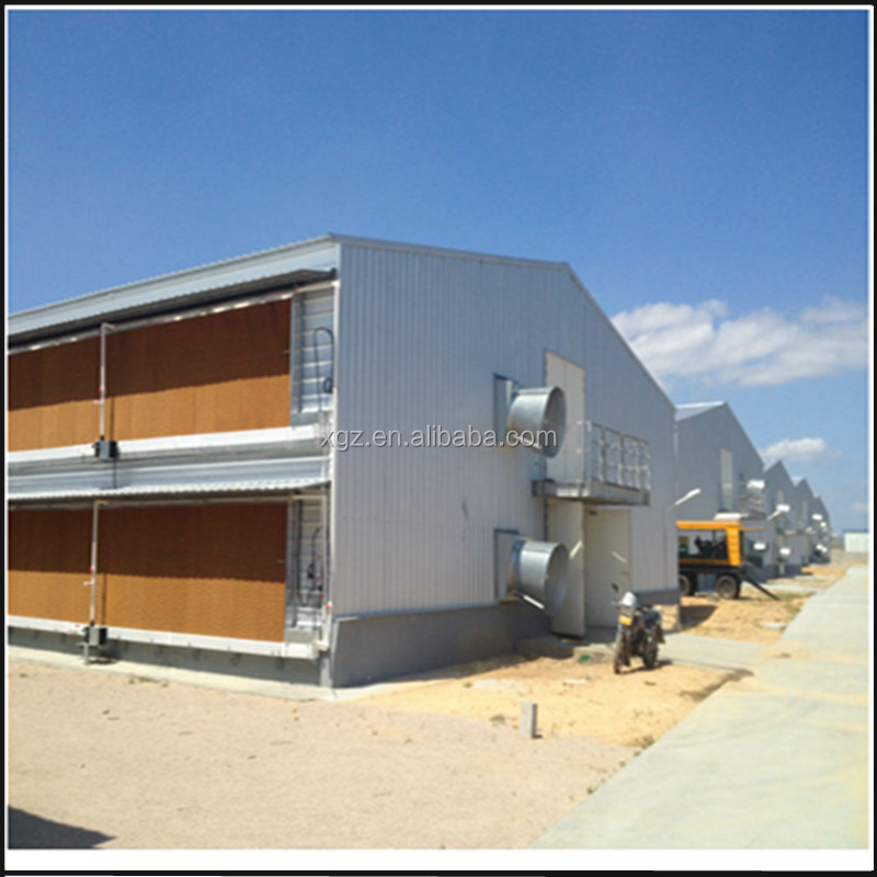 Steel Structure Poultry Chicken Shed With Automatic Equipments