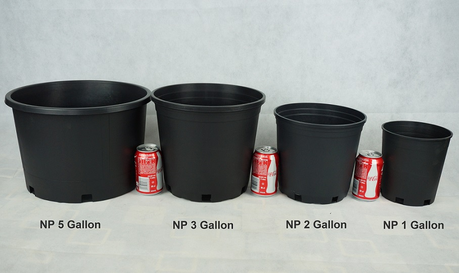 Nursery Containers Common Pot Sizes Used In Nurseries