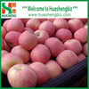 Top Quality Chinese Fresh Red Fuji Apple/Fresh Apple Prices