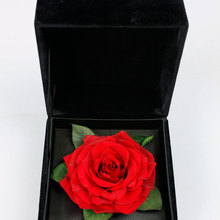 Dried Preserved Flower Rose Petal in Box