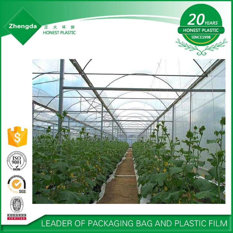 Manufacturer factory price selling high tensile resistance uv treated greenhouse film