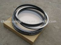 drift oil seal ring