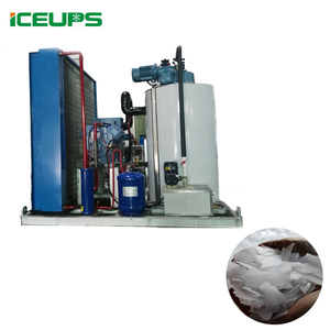 Seawater 2 Ton Flake ICE Maker Machine for Sale with CE Certificates