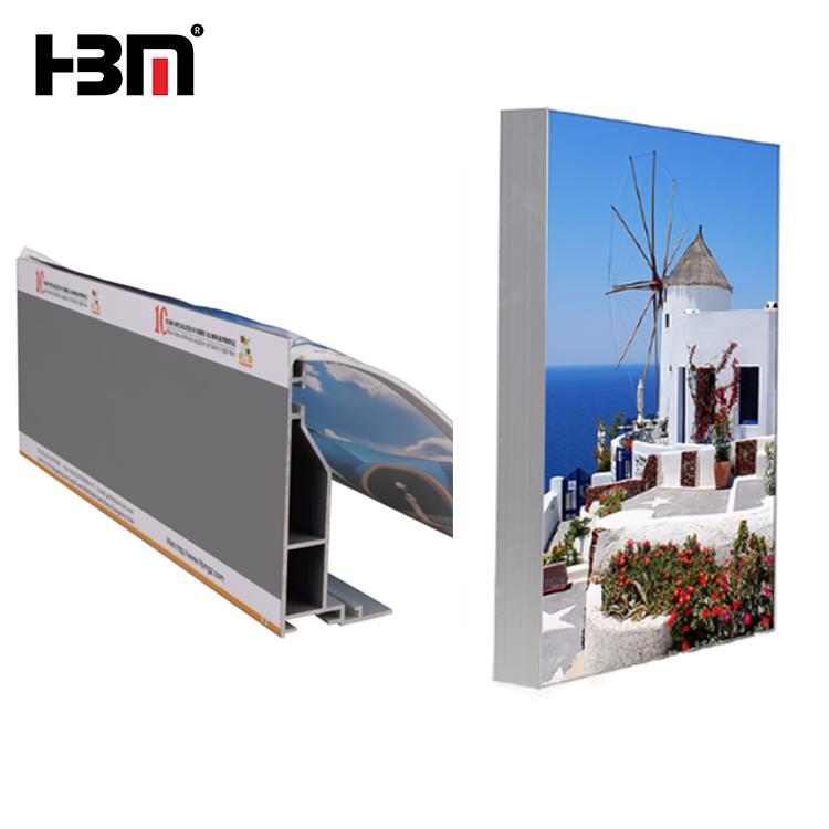 Borderless Picture Frames, Borderless Picture Frames Suppliers and ...