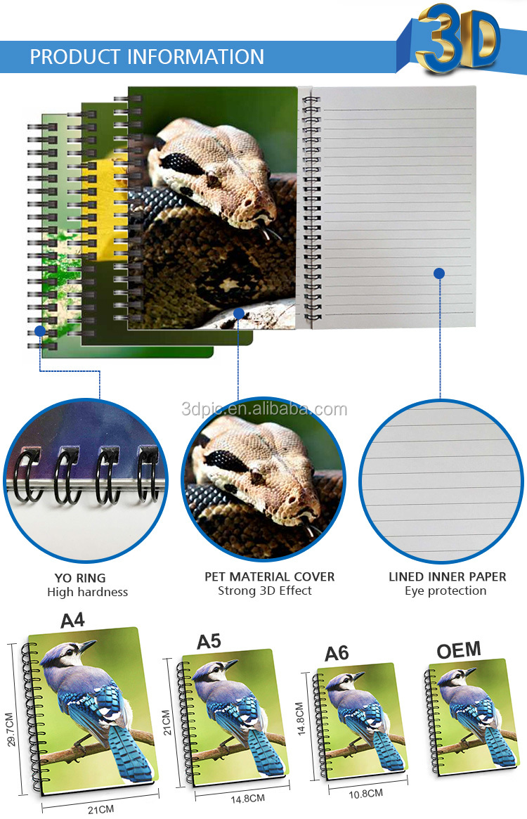 Custom best quality 3D lenticular ruler accept odm and oem