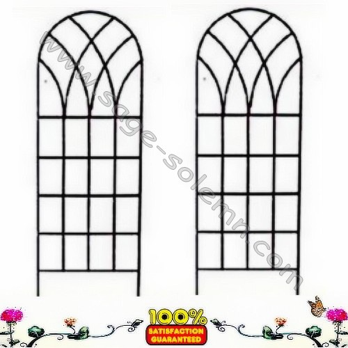 Decorative Garden Metal Trellis, Steel Plant Support