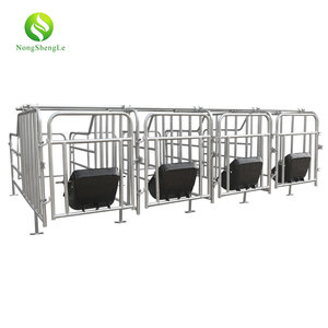 Galvanized pen farrowing crate fence using pig farrowing sow stall farming equipment