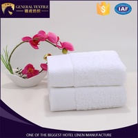 China manufacter 100% Pakistan cotton jacquard terry hotel hand towel