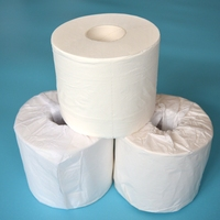 TP500 Family Application high quality Wholesale price toilet tissue paper roll 2ply