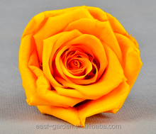 Hot sale different types of yellow colors natural preserved rose flower
