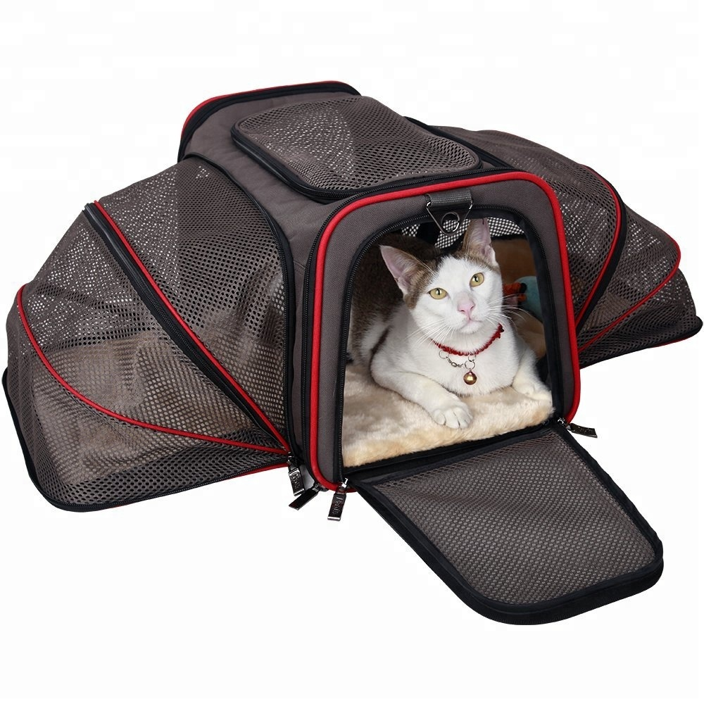 도매 Pet Products 개 Cat 여행 외 Carry 케이지 Mesh Cat Carrier Bag