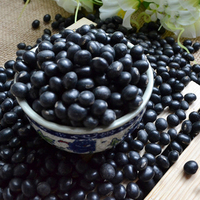 Black Soya Beans With Green Kernel Inside - Buy Black Soya Beans ...