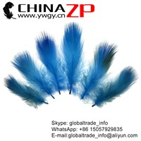 No.1 Supplier CHINAZP Factory Wholesale Feather Size from 10cm to 15cm Dyed Turquoise Blue Mallard Duck Flank feathers