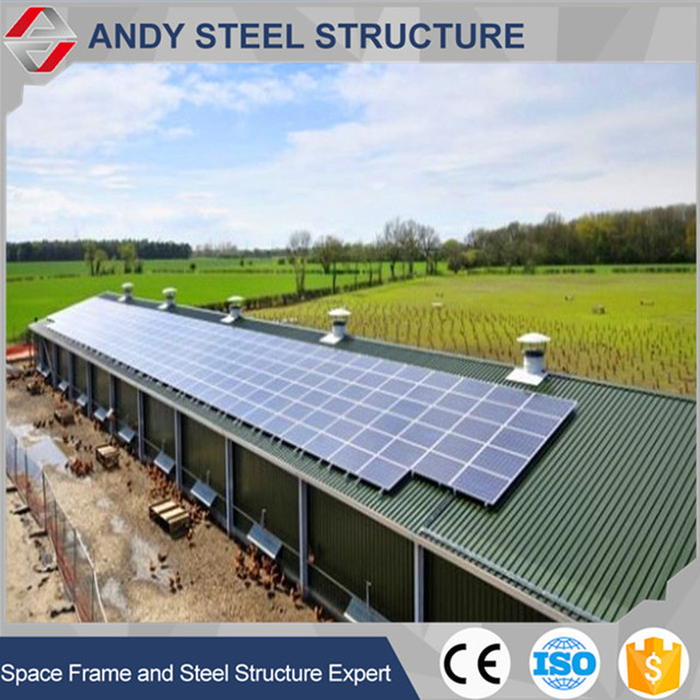 High quality poultry farm shed construction with steel structure