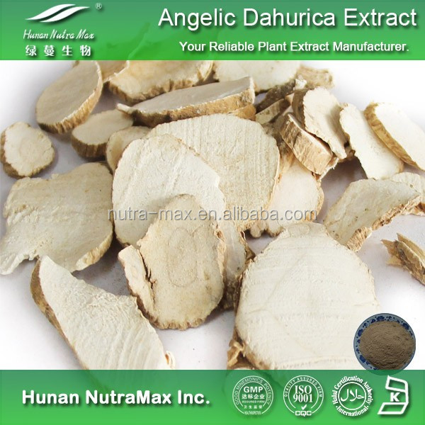 Health Products Dong Quai Root Extract Ligustilide 1%,Dong Quai Root P.E.,Dong Quai Root Extract