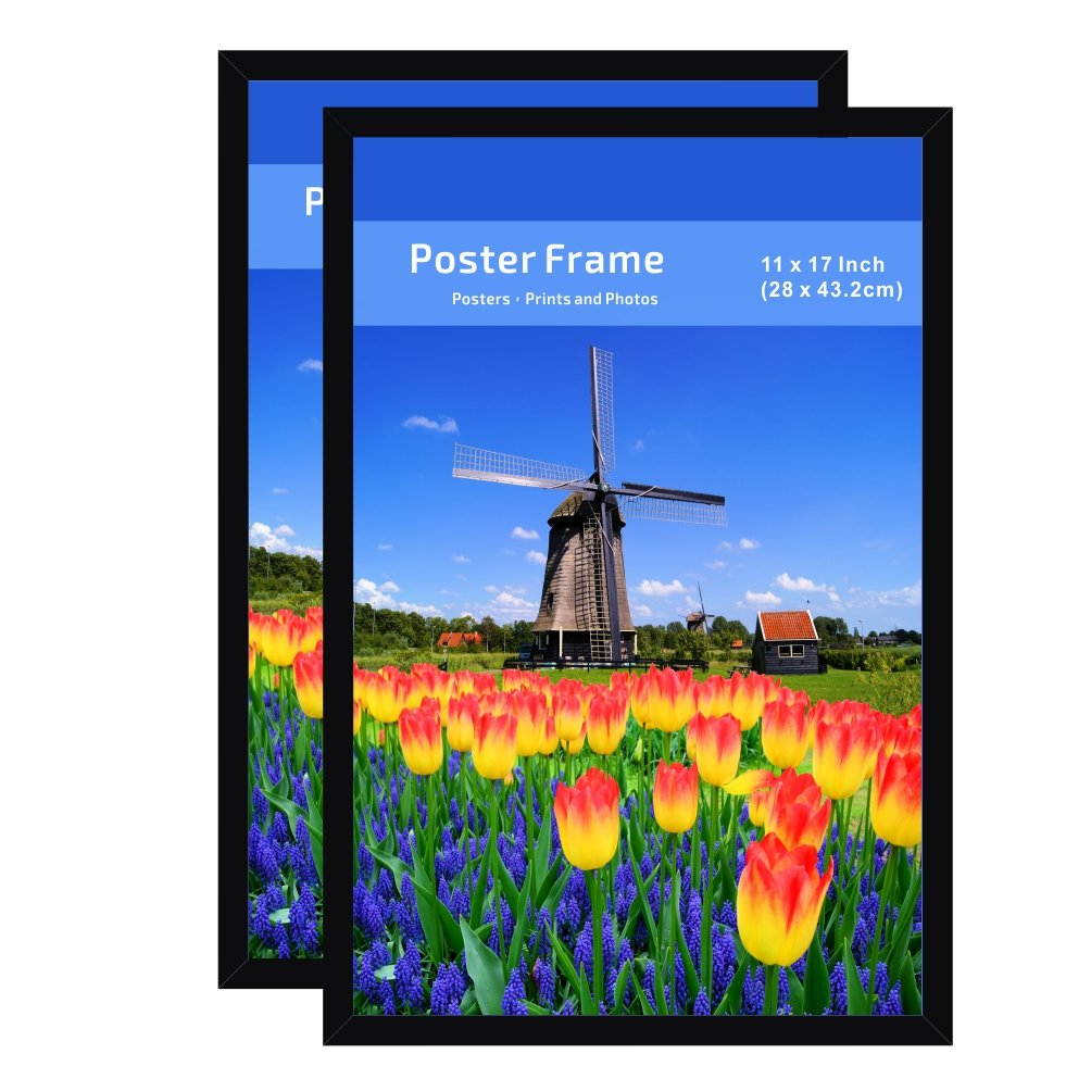 Cheap backer board find backer board deals on line at alibaba get quotations poster photo picture frame 11 by 17 inch 2 pack clear plastic window jeuxipadfo Images