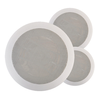 6.5 Inch 6W in wall mount ceiling speakers RA-2410