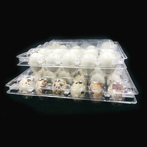 Custom Size Disposable Clear PVC/PET Plastic Packaging Box for Quail Eggs