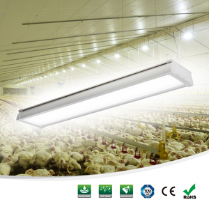 Poultry shed light 4ft 6ft 8ft waterproof led linear light dimmable with 5 years warranty chicken farm light