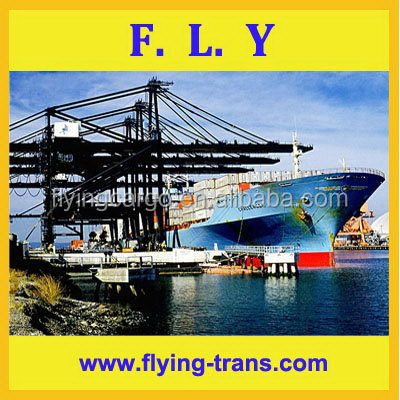 Dedicated trust worthy considerate service top level new products freight forwarder from china to uruguay