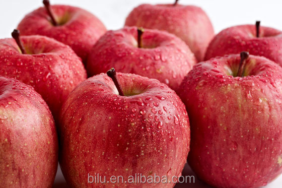 Fresh Fuji Apple fruits for sale exporter Russia in 2016