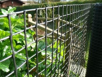 Hdpe Climbing Plant Support Net Mesh Garden