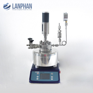 Teflon Lined Hydrothermal Synthesis Autoclave Reactor