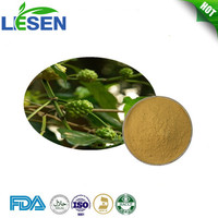 ISO factory supply Morinda officinalis Extract 10:1