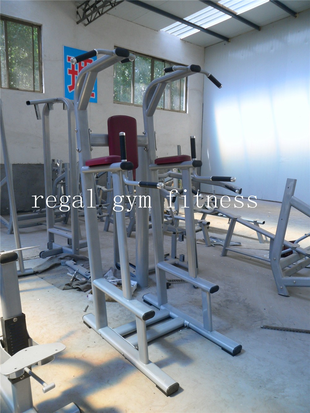 Best Quality Gym Equipments Total Gym/Professional Gym Equipment chin dip assist for sales