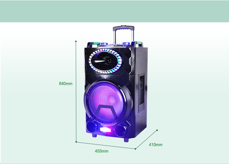 New 15 Inch Portable PA Party Speaker with Trolley