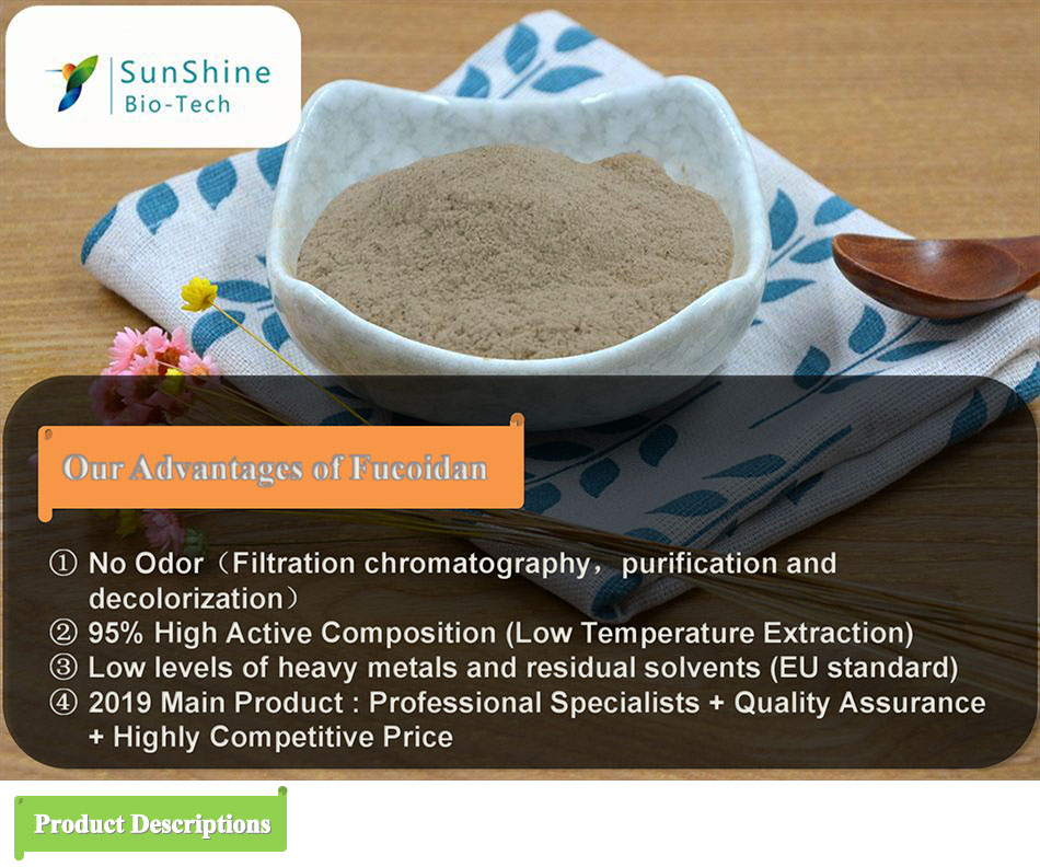 Seaweed Extract Powder fucoidan from fucus vesiculosus spiral seaweed extract