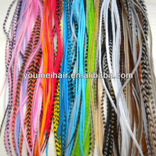 2013 Most populary fashionable and cheap real rooster feathers hair extension with factory price