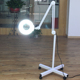 Faceshowes Factory Price Hot Sale LED Floor Lamp for Nails Salon with 5X Magnifier