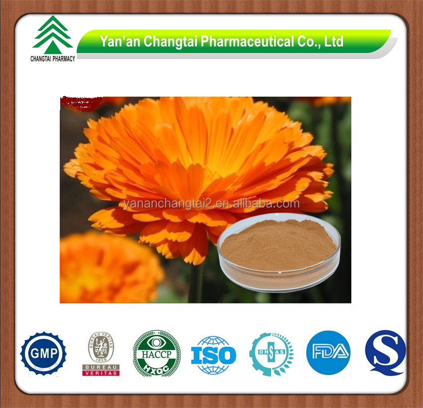 GMP factory supply Herb natural Marigold P.E.