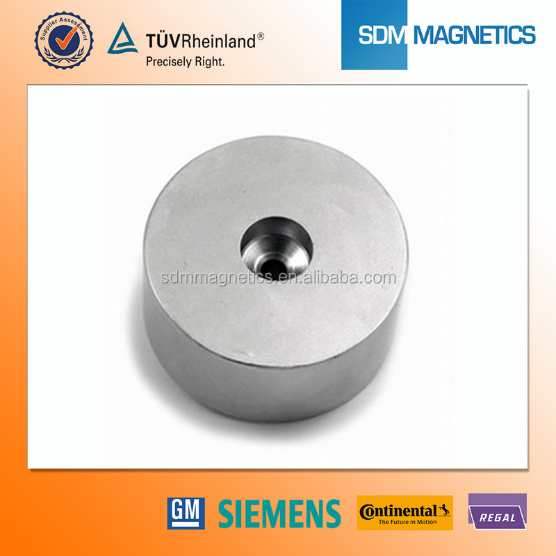 Industrial Application High Quality Water Pump Rotor Magnet Neodymium Magnet for Sale