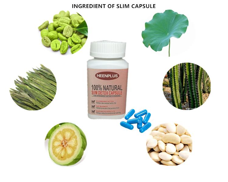 Garcinia cambogia GMP factory weight loss capsule