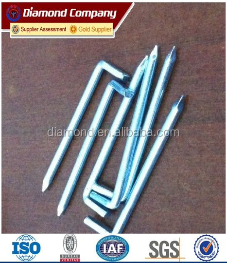 factory direct sale Used in construction L nail/L shape nail/cement L shape nail