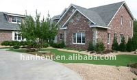 Landscaping grass around house