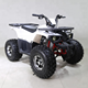 New design Air Cooled Quad Bike 125CC Sport ATV with 8 inch Wheel