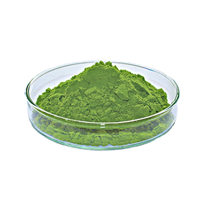 Organic Natural Wheat Grass Powder With Private Label